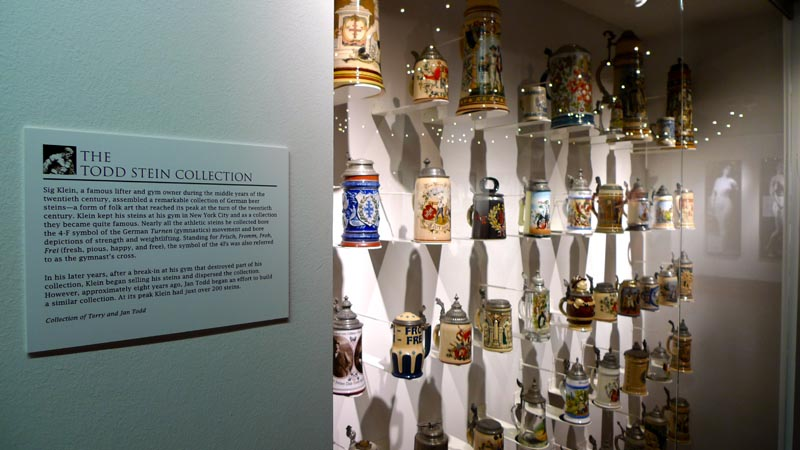 Thirty-seven physical culture themed steins of various sizes, from the Todd Art Collection, in a display case, in the main lobby.