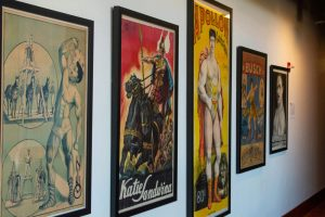 Five posters of strong men and women, including one of Katie Sandwina and another of Apollon (Louis Uni), from the Todd Poster Collection, in the Reading Room.